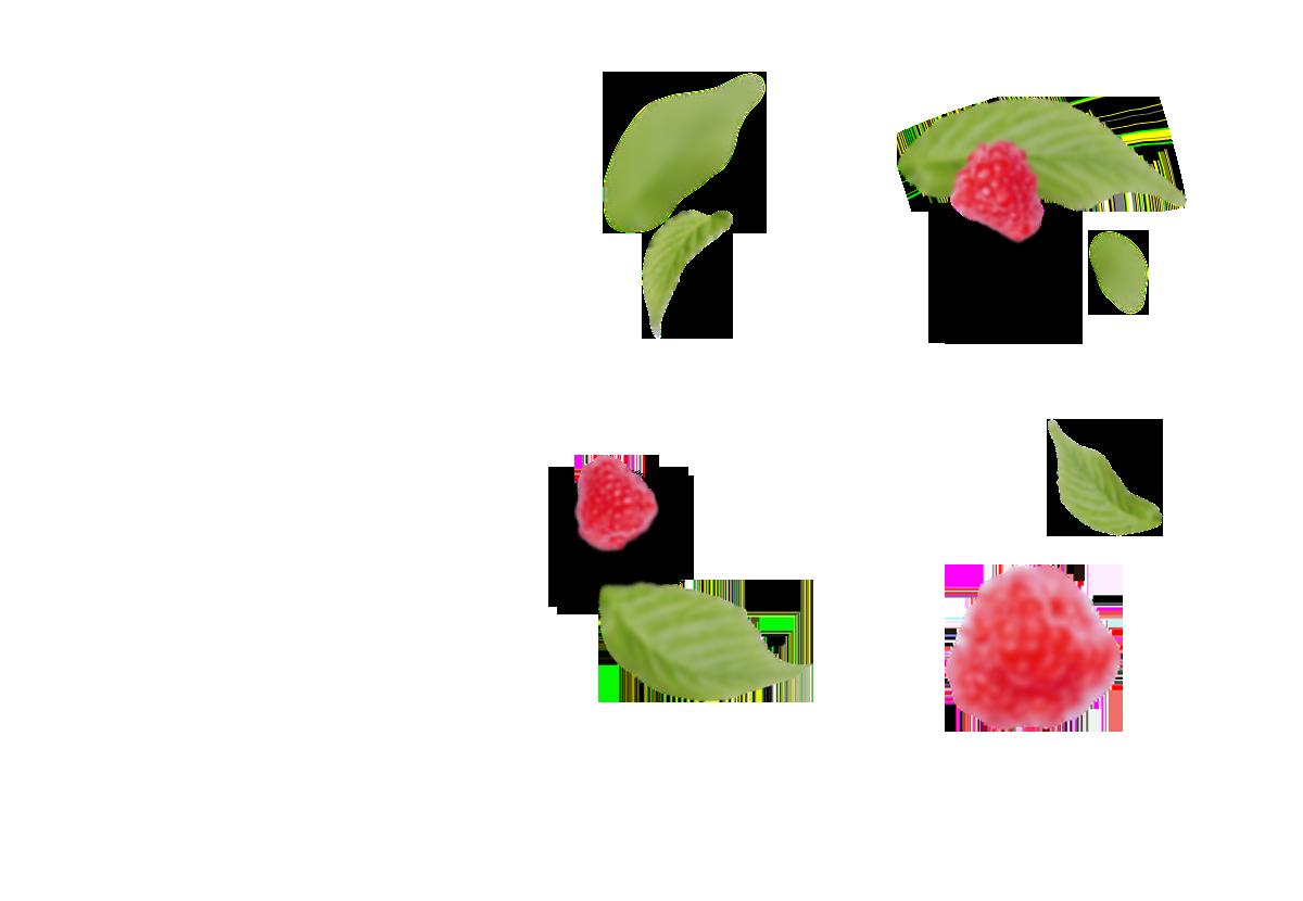 Himbeeren - Hintergrund